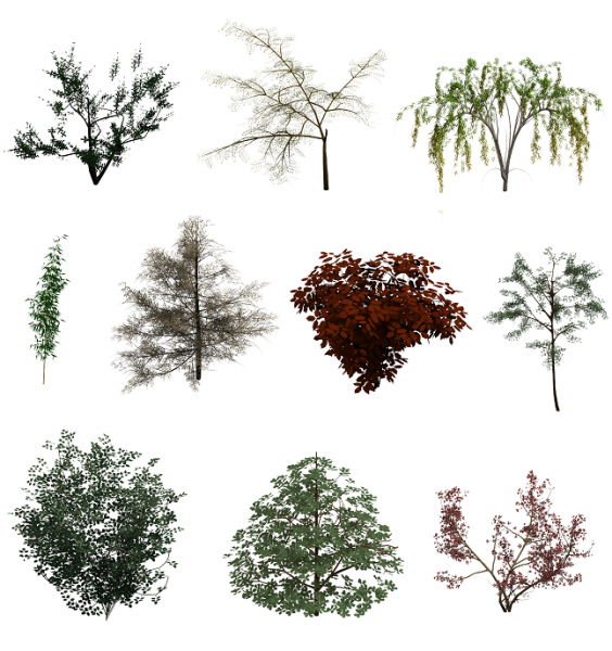 3DS Max Tree Collection