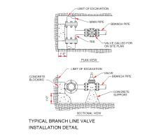 Typical branch line valve installation