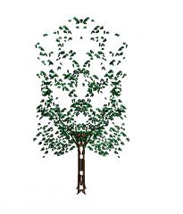 2d_Revit_Tree_7metres_high revit family