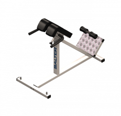 Hyperextension bench 3DS Max model