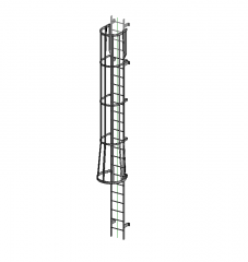 Ladder with cage Revit family