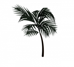 Palm tree 3ds max model
