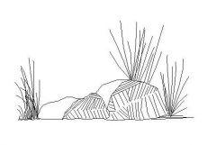 Rockery and Plants 02