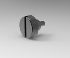 Autodesk Inventor 3D CAD Model of  Slotted pan set screws M2X2