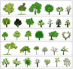 Artistic tree elevations collection 01