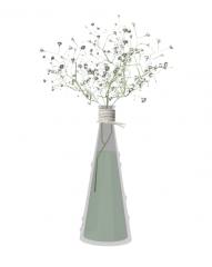 带花瓶的菊科skp
