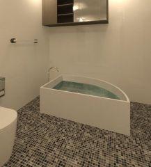 Bath Tub Revit Family