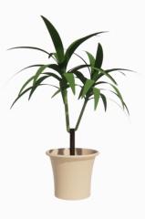 Tree pot revit family