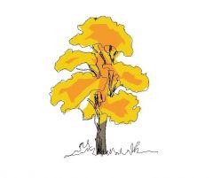 Деревья - Autumnal (Free 2)