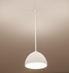 White metal Ceiling Lamp  revit family