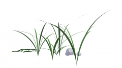 Grass with small stone revit family