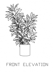 Green Plant for Balcony 8 dwg Drawing