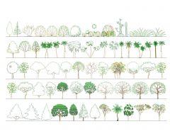 Árboles y plantas verdes de diferentes tipos .dwg