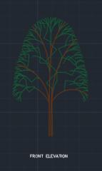 Mango Tree for Garden 00001 dwg Drawing