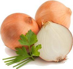 Onion.dwg