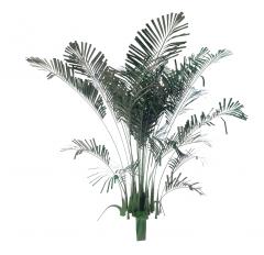 PALMILLA_PLANT revit family