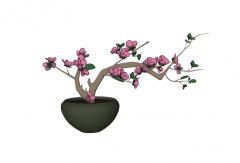 Peach blossom plant skp
