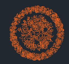 円形の花柄のdwg形式
