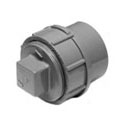 Pipe Fitting Cleanout Adapter CPVC Revit