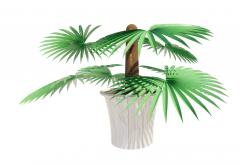 Palm Plant revit family