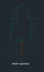 Rowan Tree for Garden 00001 dwg Drawing