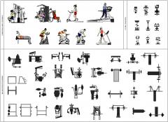 Gym Collection - Colour 1