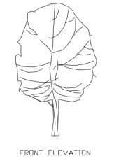 Trees for Landscape 10 Elevation dwg Drawing