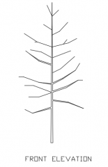 Trees for Landscape 11 Elevation dwg Drawing