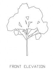 Trees for Landscape 2 Elevation dwg Drawing