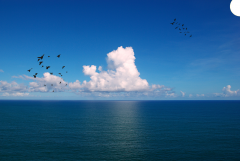 View of a ocean .png texture